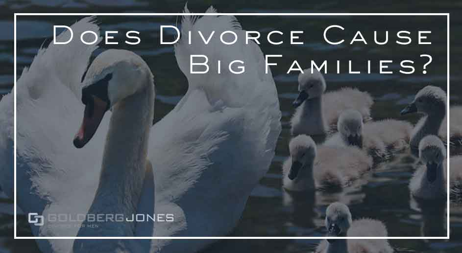 does divorce cause larger families