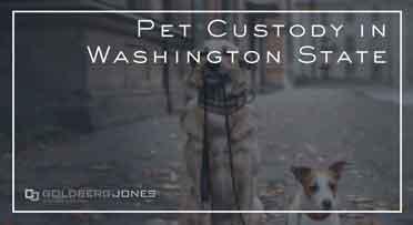 how is pet custody decided
