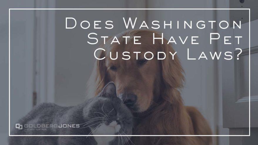 can i get custody of my pets